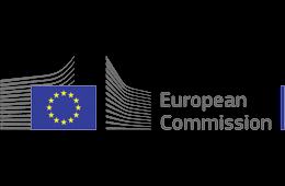 Image result for european commission logo
