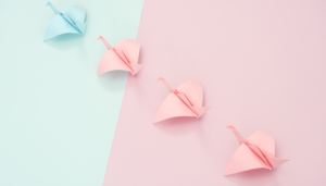 paper birds on a pink and blue background