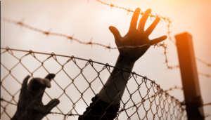 child's hands reaching over a fence