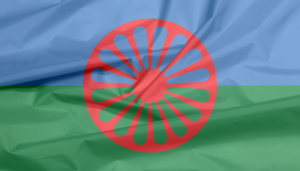 a red wheel on a blue and green flag